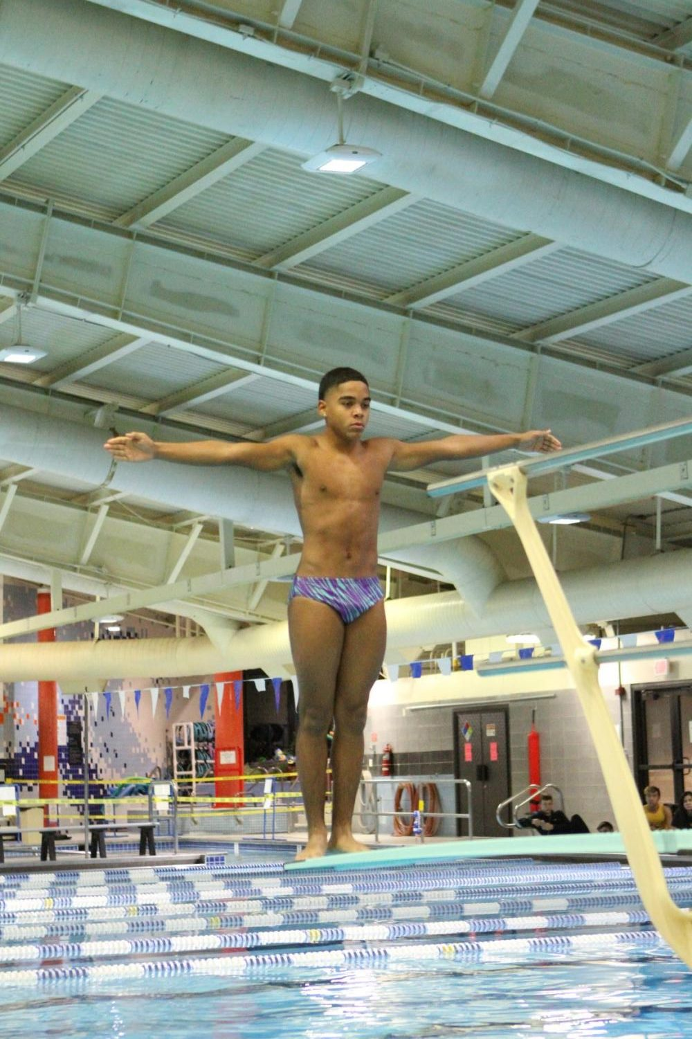 Sophomore Ari Snow, who placed first in Virginia at states, prepares a dive.