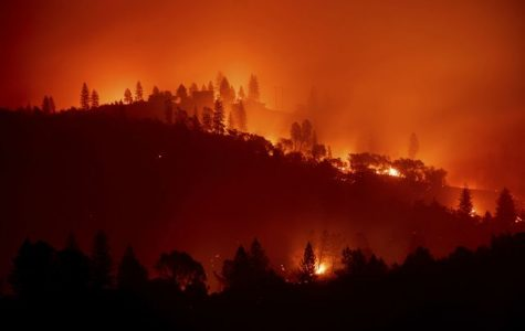 Looking Back: California Wildfires in Review